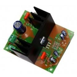 Amplificador 15W mono 1 canal