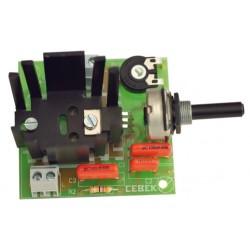 Regulador CA velocidad motor 1500W