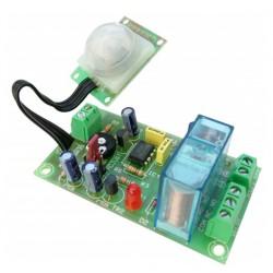 Detector PIR de movimiento 12VCC