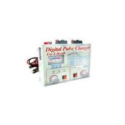 Cargador digital de baterías para 4-16 pilas y corriente entre 9 y 14V