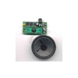 Kit electrónico para montar una Grabadora digital de voz muy económica