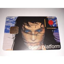 Tarjeta plástica inteligente Open Platform de programación electrónica