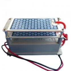 Placa cerámica generadora de ozono 10mg/h con salida 220V