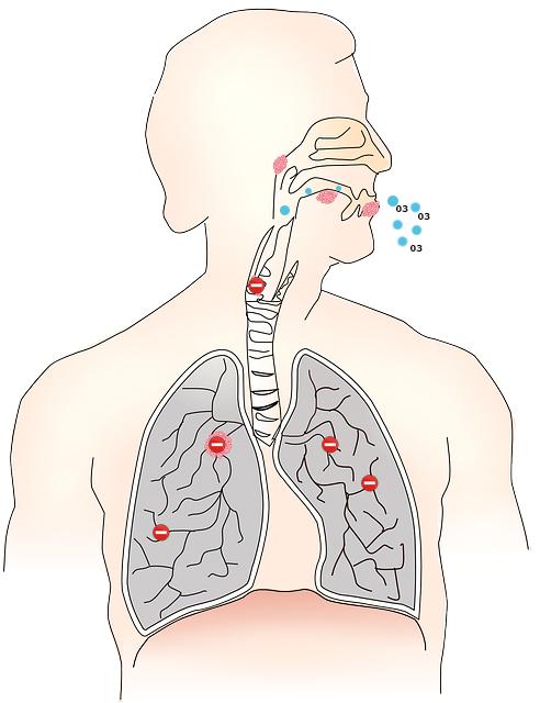 problemas-respiratorios-ozono